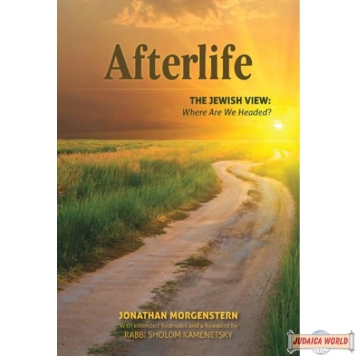 Afterlife, The Jewish View, Where Are We Headed?