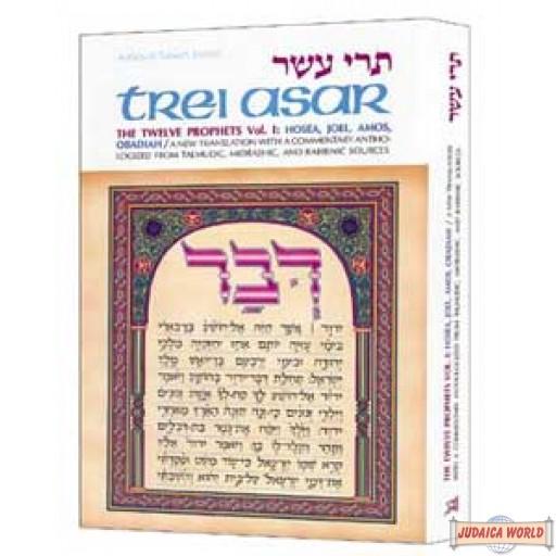 Trei Asar I / Twelve Prophets I - Hardcover