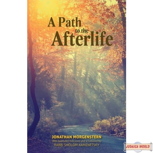 A Path to the Afterlife, Based on the Teachings of RABBI SHOLOM KAMENETSKY