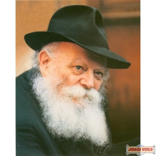 "16"" x 20"" Beautiful Rebbe picture - Side Look on poster paper (Rights belong to M Kavitzky)"