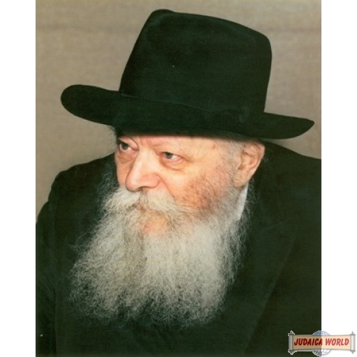 """8"""" x 10"""" Picture of The Rebbe with the Gevirim on poster paper (Rights belong to M Kavitzky)"""