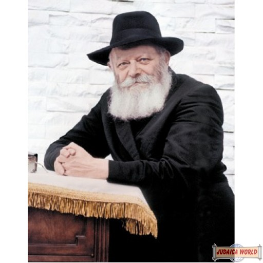 """8"""" x 10"""" Picture of The Rebbe (standing by the Shtender in 770) copyrighted by S.B. Goldstein"""