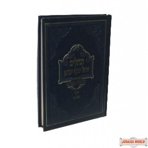 תהלים עם פירוש תהלות מנחם Tehillim with Rebbe's commentary Vol #3