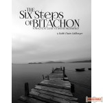 The Six Steps of Bitachon, A Practical Guide to Divine Providence