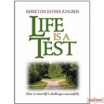Life is a Test, How To Meet Life's Challenges Successfully