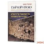 Tishah B'av: Texts, Readings, And Insights - Softcover