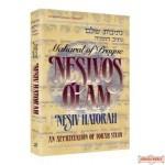 Nesivos Olam: Nesiv Hatorah - Softcover