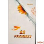 22 Promises  - Novel