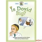 Is Dovid Big?