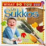 What Do You See On Sukkos - Board Book