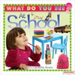 What Do You See At School - Board Book
