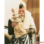 "16"" x 20"" Picture of The Rebbe with Sefer Torah on poster paper (Rights belong to M Kavitzky)"