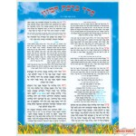 "Birkas Hamozon (Nusach Ari) - Laminated - Small - 8 1/2"" X 6 1/2"""