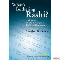 What's Bothering Rashi? Vayikra