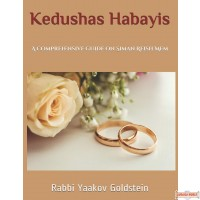 Kedushas Habayis: A comprehensive guide on Siman Reish Mem