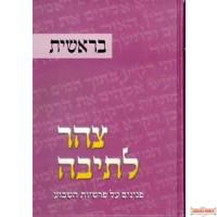 Tzohar Lteiva #1 - צוהר לתיבה חלק א