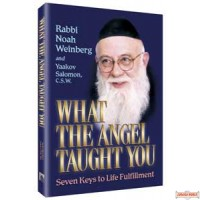 What the Angel Taught You - Softcover
