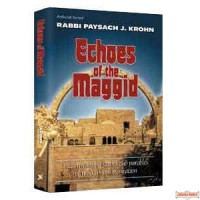 Echoes Of The Maggid - Hardcover