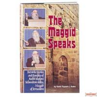The Maggid Speaks - Hardcover