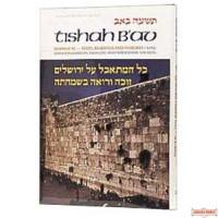 Tishah B'av: Texts, Readings, And Insights - Hardcover