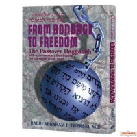 Haggadah From Bondage To Freedom - Hardcover