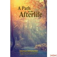 A Path to the Afterlife, Based on the Teachings of RABBI SHOLOM KAMENETSKY