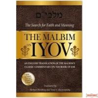 The Malbim on Iyov