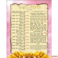 ברכת השחר Morning Blessings Laminated Poster Blue or Pink