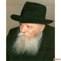 """16"""" x 20"""" Picture of The Rebbe with the Gevirim on poster paper (Rights belong to M Kavitzky)"""