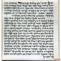 Mehudar Alter Rebbe Ksav Mezuza 15 cm