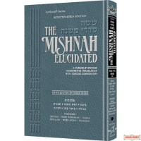The Mishnah Elucidated, Moed #3