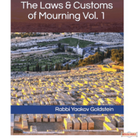 The Laws & Customs of Mourning #1 S/C