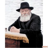 "8"" x 10"" Picture of The Rebbe (standing by the Shtender in 770) copyrighted by S.B. Goldstein"