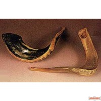 Shofar - Small