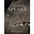 A Stone Speaks, The Voice of the Kotel